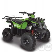 ABM ATV Ninja 110